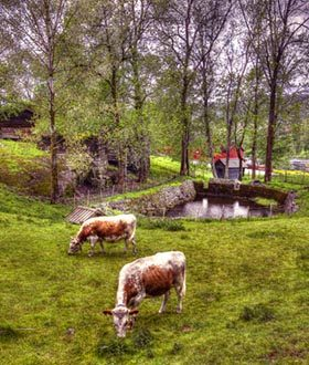 Lågdalsmuseet. Foto: Bjørn Isaksen
