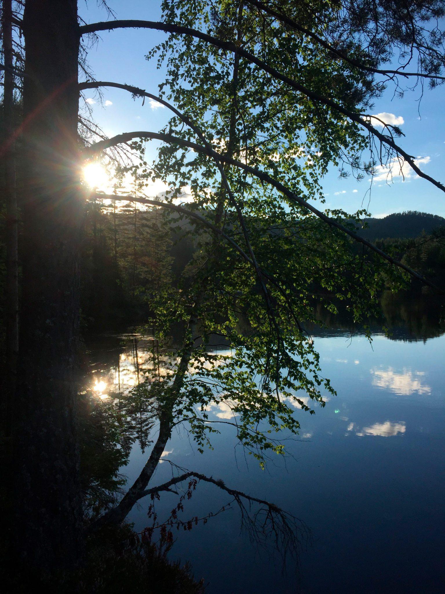 Vet du hva elven på dette bildet heter?
